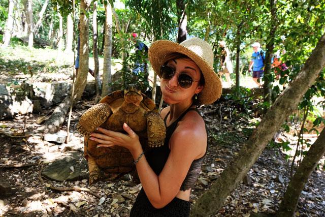 Nosy Komba tartarughe