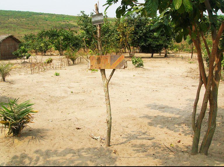 Cartello Congo