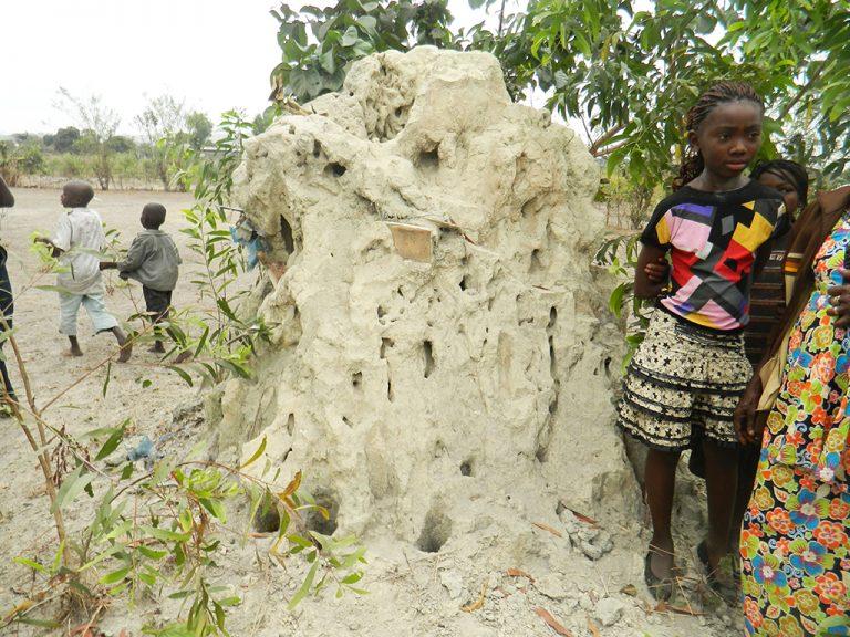 Congo roccia