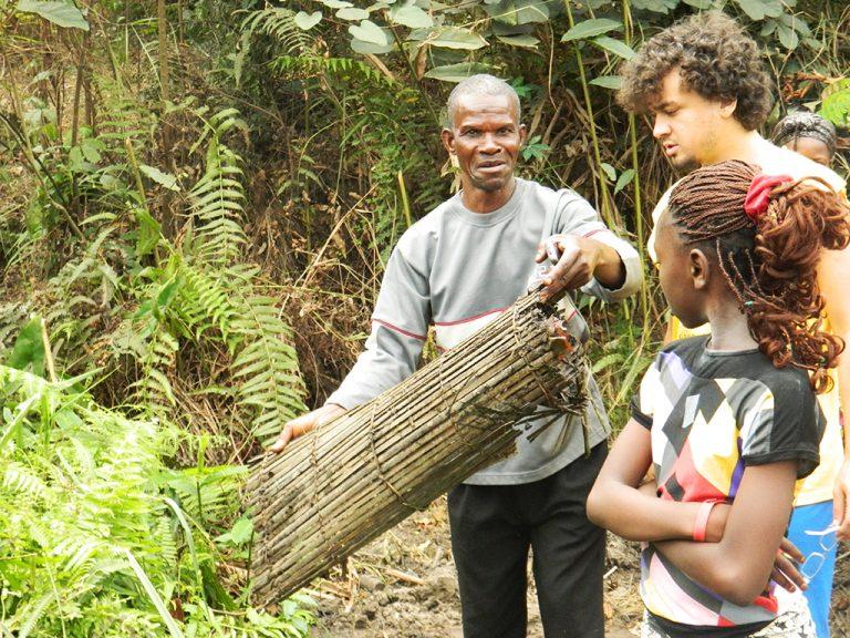 Congo tronco