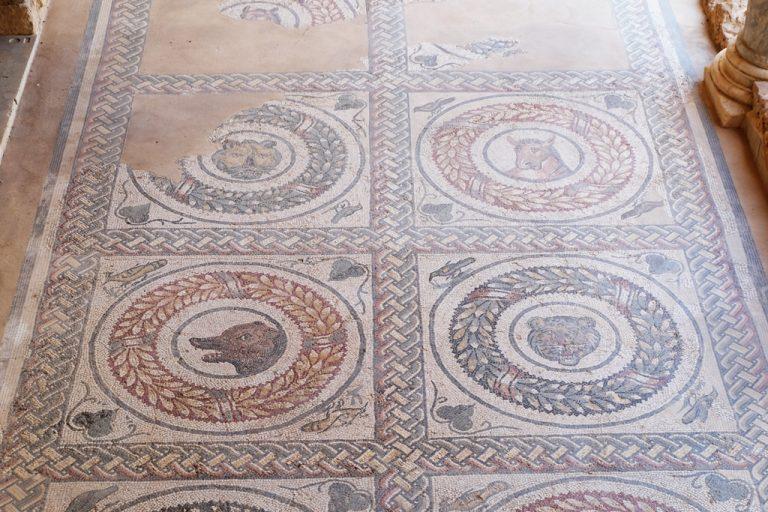 Mosaici Villa Romana