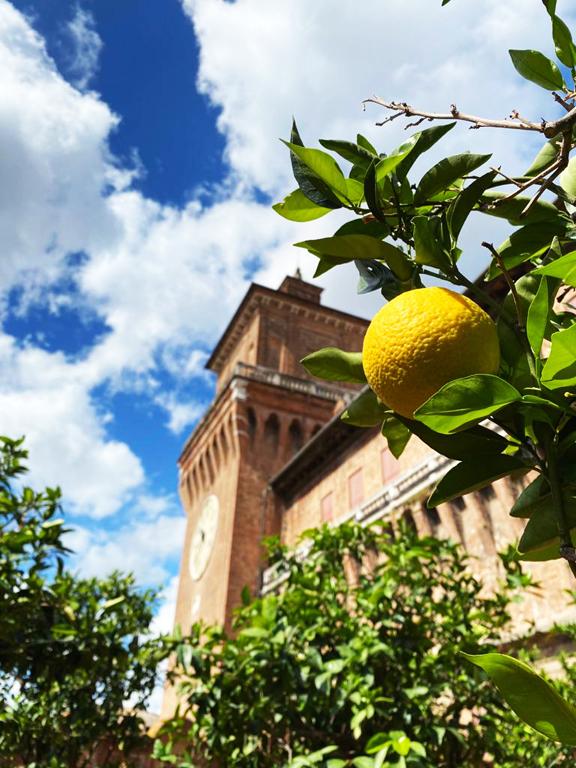 Giardino degli aranci Castello Estense