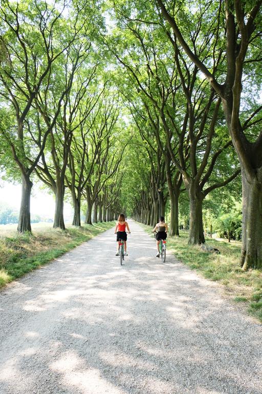 Mura Ferrara in bicicletta
