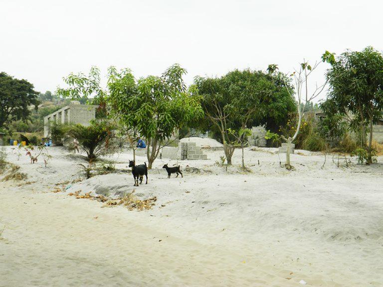 Strada di sabbia in Congo