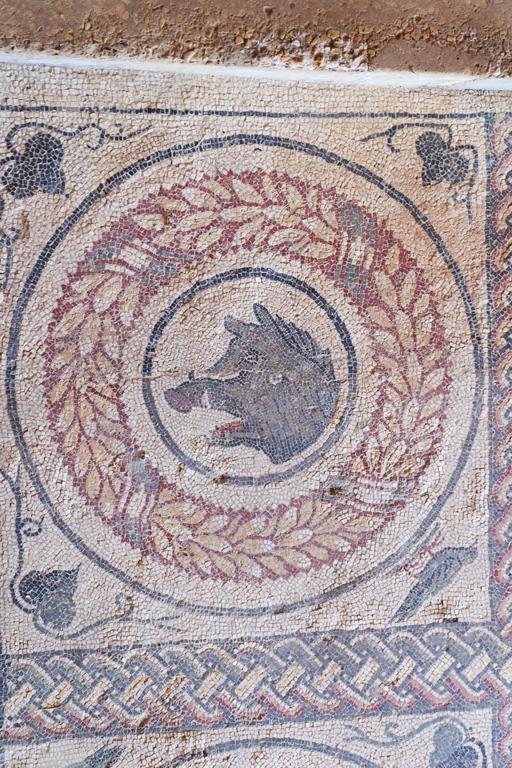 Mosaico cinghiale Sicilia