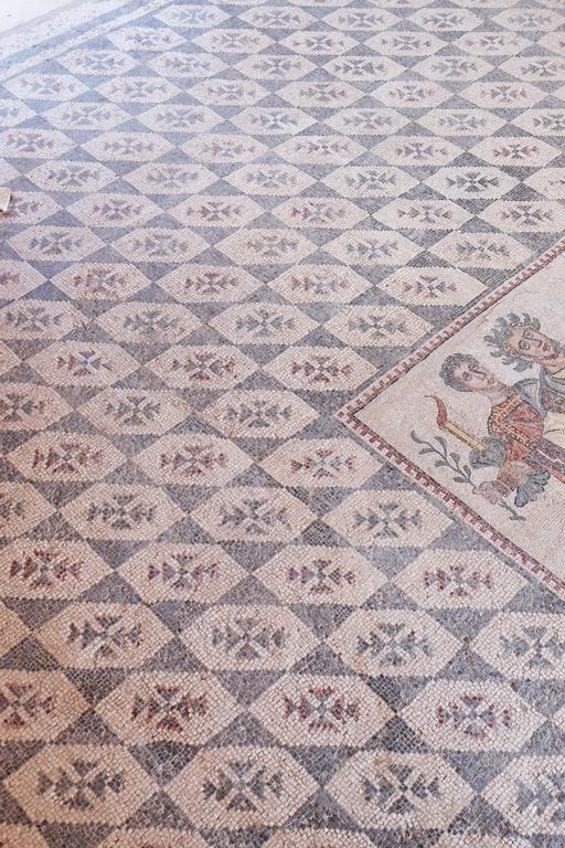 Villa Romana mosaici